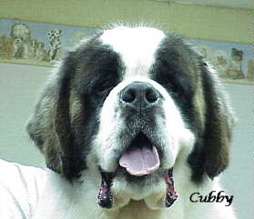 JPEG image of Cubby