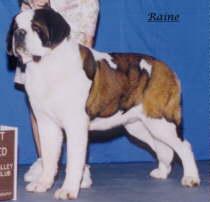 JPEG image of Raine